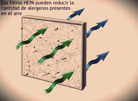 Conga Cecotec Excellence Filtros HEPA
