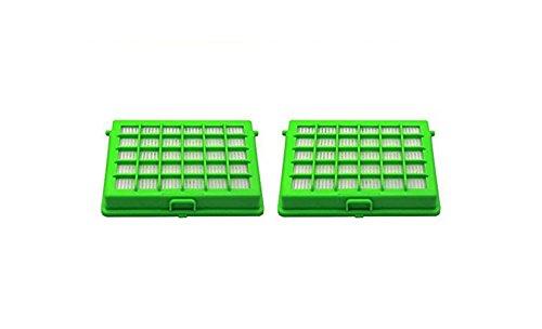 Green Label Pack de 2 Filtros HEPA para Aspiradoras Rowenta Compacteo Ergo. Reemplaza a ZR004501